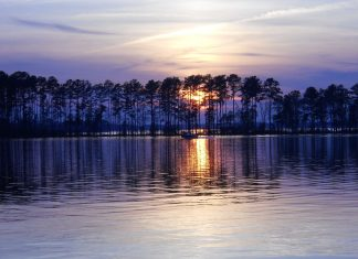 Dreher Island State Park lake murray still top summer destination in the midlands sc travel guide