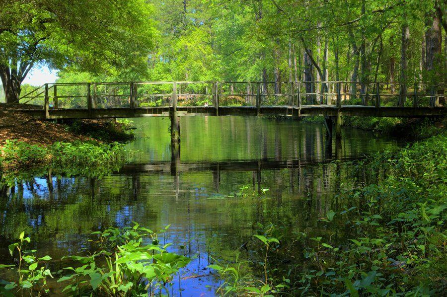 Sesquicentennial State Park sctravelguide a fun day in columbia