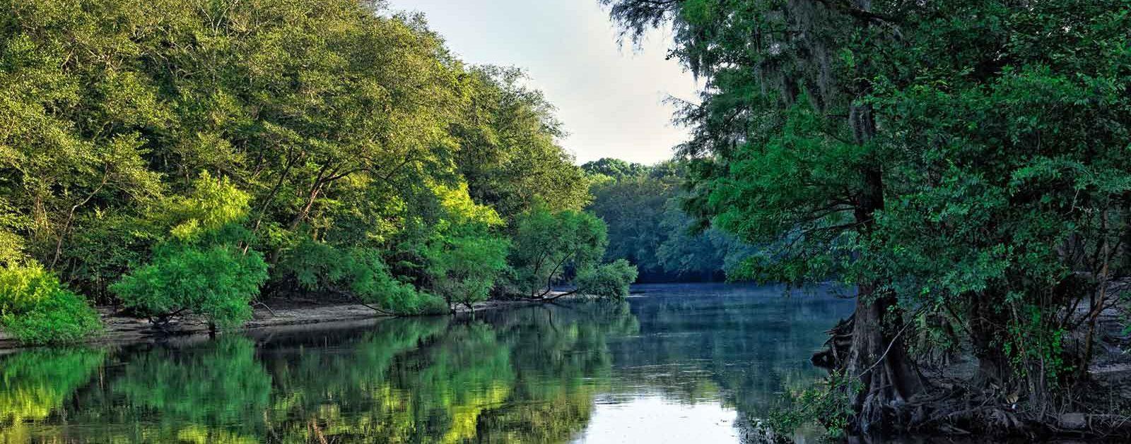 Edisto River Kayak Camping