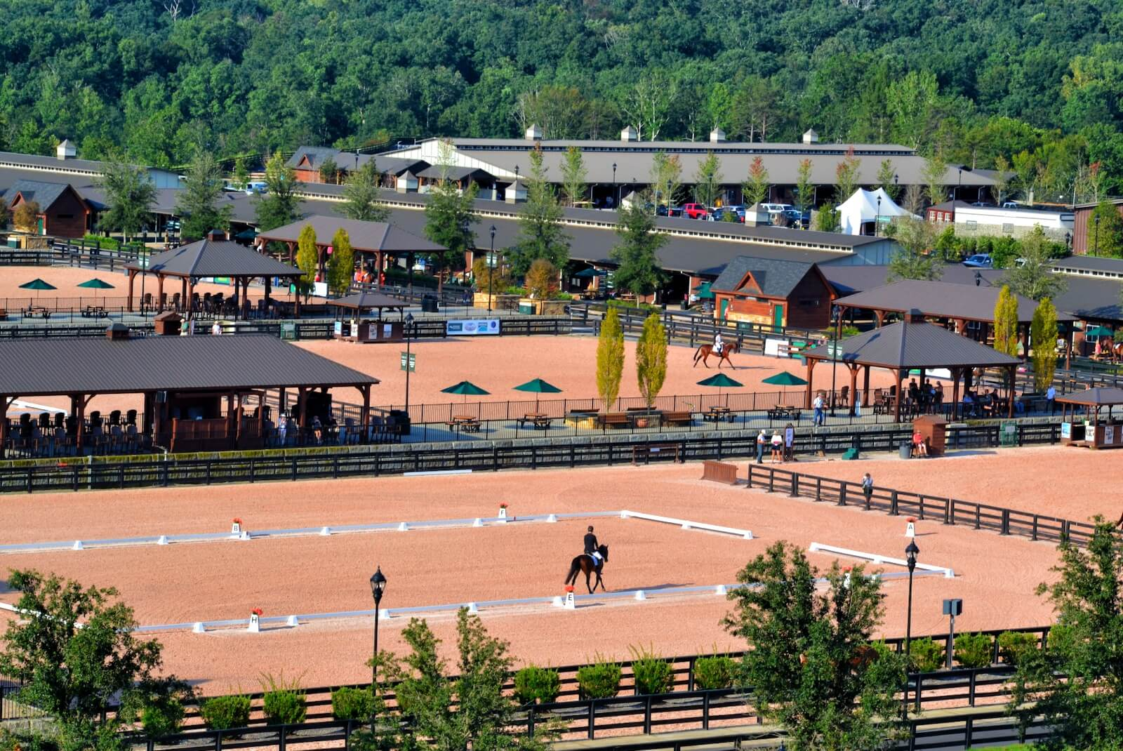tryon international equestrian center landrum sc travel guide