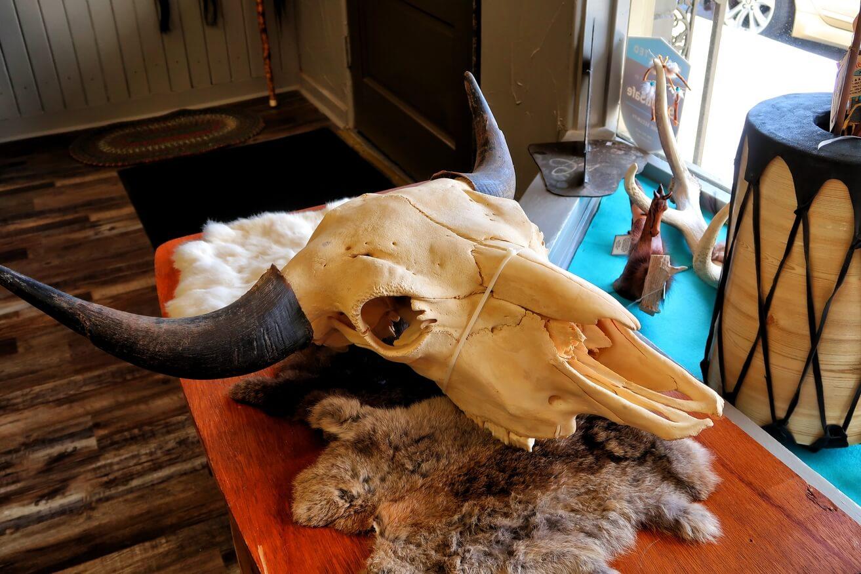white buffalo landrum south carolina sc travel guide